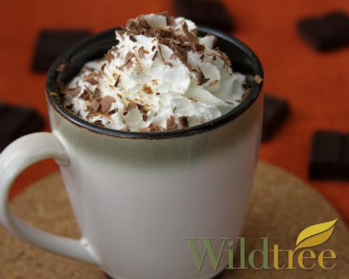 Pumpkin Chocolate Latte