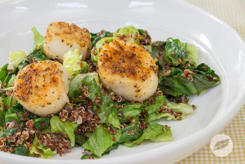 Rodeo Scallops